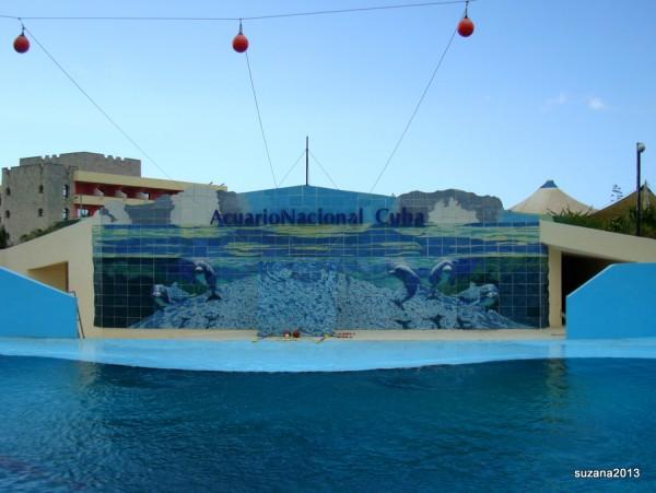 AquariumHavana